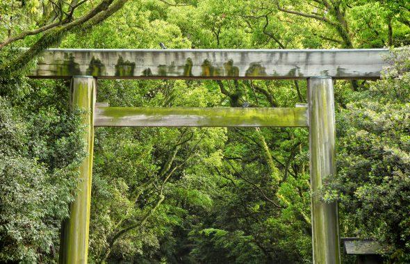 名古屋の宮参り神社